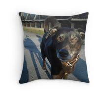 Meet Horace Throw Pillow
