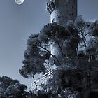 Tower by jimmy hoffman