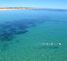 Port Noarlunga snorkelling by robertcroa