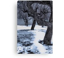 Snow covered Wasteland Canvas Print