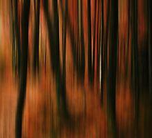 Forest 2 by bluefinart