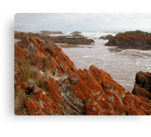 Red Lichen on Rocks, Arthur River, Tasmania, Australia. Canvas Print