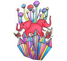 Pink Elephants Photographic Print