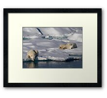 Chill Out and Relax Framed Print