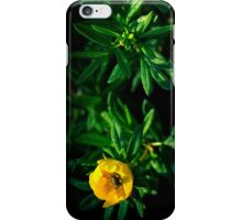NUTRITION [iPhone-kuoret/cases] iPhone Case/Skin