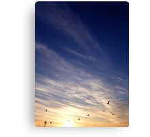 Sunset | Rocky Point, New York  Canvas Print