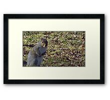 Windy Day - The Blue & The Green 001 Framed Print
