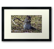 Windy Day - The Blue & The Green 004 Framed Print
