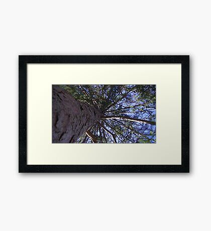 Windy Day - The Blue & The Green 007 Framed Print