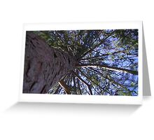 Windy Day - The Blue & The Green 007 Greeting Card