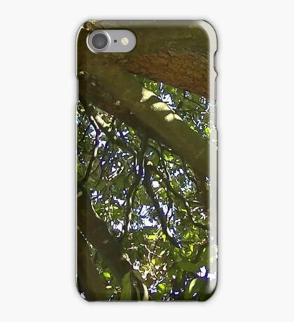 Windy Day - The Blue & The Green 010 iPhone Case/Skin