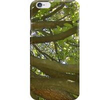 Windy Day - The Blue & The Green 011 iPhone Case/Skin