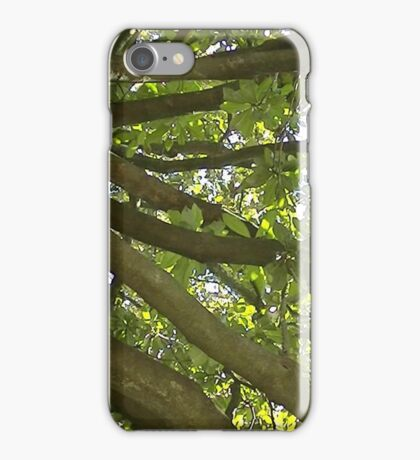 Windy Day - The Blue & The Green 012 iPhone Case/Skin