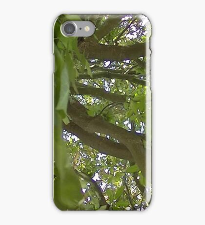 Windy Day - The Blue & The Green 013 iPhone Case/Skin