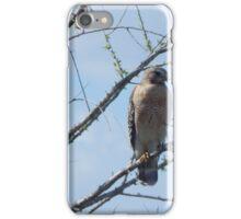 Red-Shoulder Hawk iPhone Case/Skin