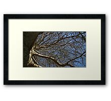 Windy Day - The Blue & The Green 016 Framed Print