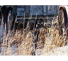 Bygone Wagon Photographic Print