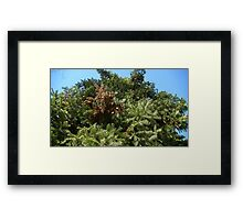 Windy Day - The Blue & The Green 019 Framed Print
