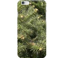 Windy Day - The Blue & The Green 021 iPhone Case/Skin