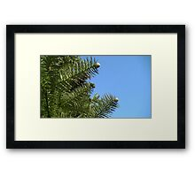 Windy Day - The Blue & The Green 022 Framed Print