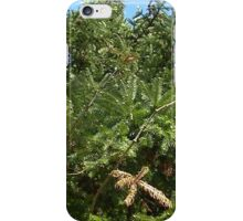 Windy Day - The Blue & The Green 024 iPhone Case/Skin