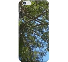Windy Day - The Blue & The Green 025 iPhone Case/Skin