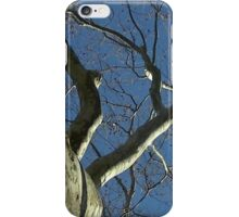 Windy Day - The Blue & The Green 031 iPhone Case/Skin
