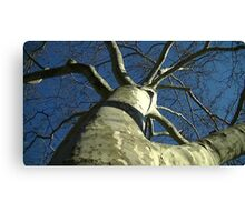 Windy Day - The Blue & The Green 032 Canvas Print