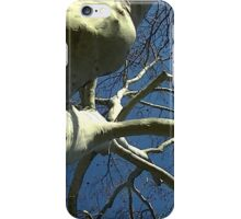 Windy Day - The Blue & The Green 034 iPhone Case/Skin