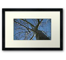 Windy Day - The Blue & The Green 035 Framed Print