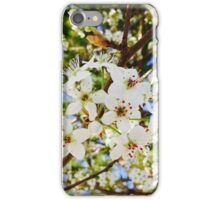 Pear Tree Blossoms iPhone Case/Skin