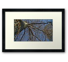 Windy Day - The Blue & The Green 037 Framed Print