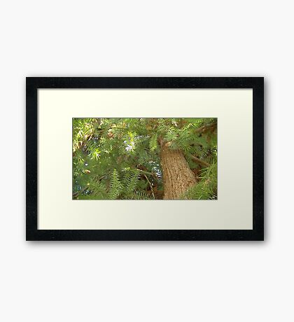 Windy Day - The Blue & The Green 039 Framed Print