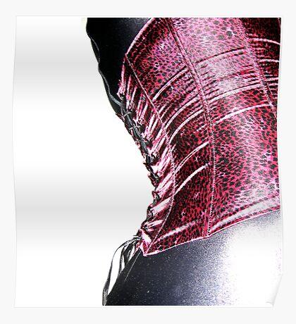 corset curve Poster