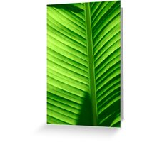 Palm Number 2 Greeting Card