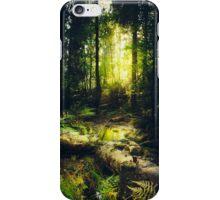 Down the dark ravine iPhone Case/Skin