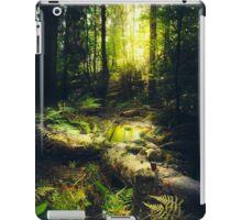 Down the dark ravine iPad Case/Skin