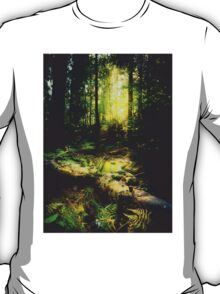 Down the dark ravine T-Shirt