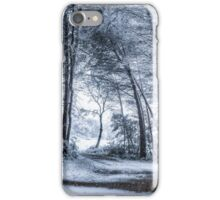 Unexpected Snowfall iPhone Case/Skin