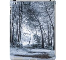 Unexpected Snowfall iPad Case/Skin