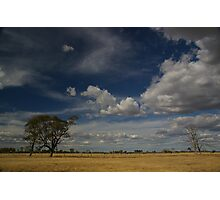 Blue skies and brown grass Photographic Print