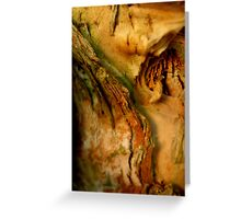Paperbark Puzzle Greeting Card