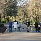 Dogwalkers by CreativeEm