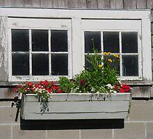 Flowers in a box by Ronee van Deemter