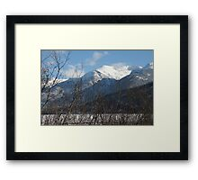 Relax in the Armchair Framed Print