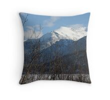 Relax in the Armchair Throw Pillow
