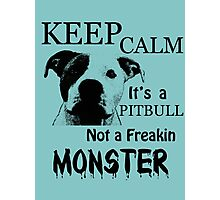 keep calm its a pitbull not a freakin monster Photographic Print