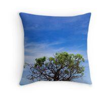 Boab Tree, Broome Throw Pillow