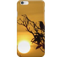 Sunrise Song With Love From Yaroomba iPhone Case/Skin