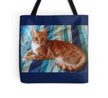 My beautiful Morris Tote Bag